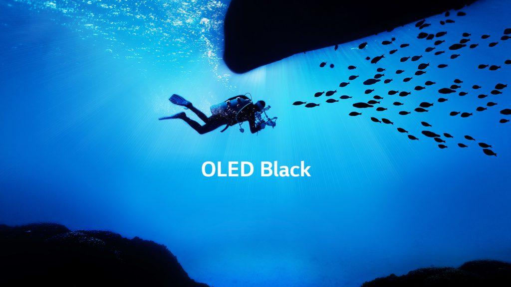 LG OLEDC9PLA OLED Screen