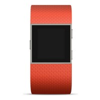 Image of Fitbit FB501TAL